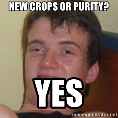 Stoner Guy - New Crops or Purity? Yes