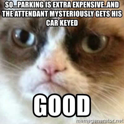 angry cat asshole - SO...Parking IS EXTRA EXPENSIVE..AND THE ATTENDANT MYSTERIOUSLY GETS HIS CAR KEYED GOOD