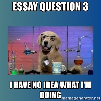 Chemistry Dog - Essay Question 3 I have no idea what I'm doing