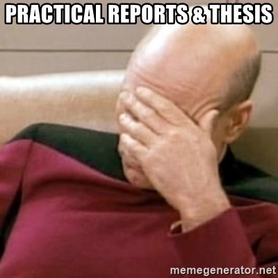 Face Palm - PRACTICAL REPORTS & Thesis