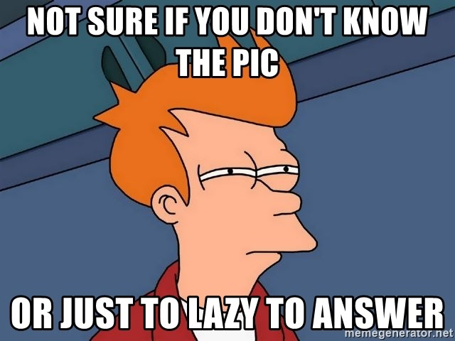 Futurama Fry - not sure if you don't know the pic or just to lazy to answer