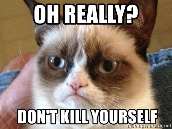 Angry Cat Meme - oh really?  don't kill yourself