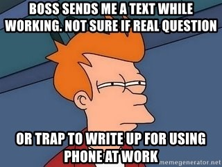 Fry squint - Boss sends me a text while WORKING. not Sure if real question or trap to write up for using phone at work