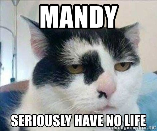 Serious Cat - mandy seriously have no life