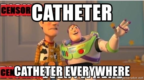 Toy Story Everywhere - Catheter Catheter everywhere