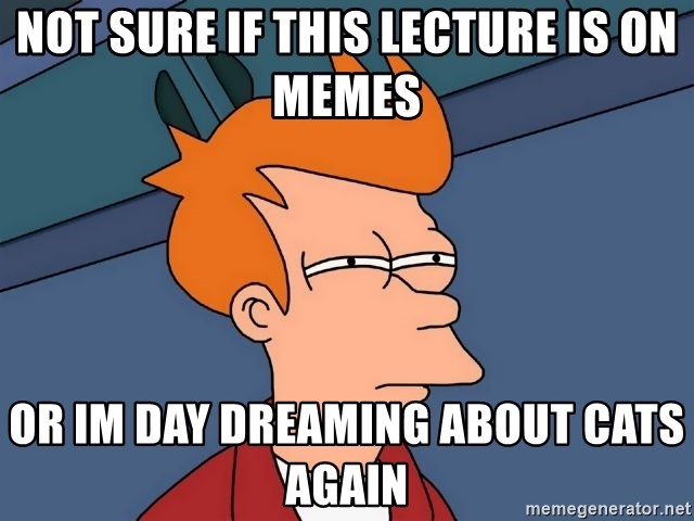 Futurama Fry - Not sure if This lecture is on memes Or Im day dreaming about cats again