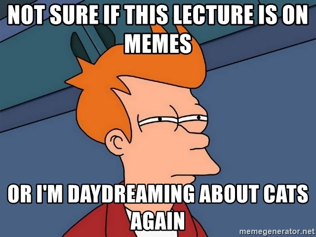 Futurama Fry - NOT SURE IF THIS LECTURE IS ON Memes Or I'm daydreaming about cats again