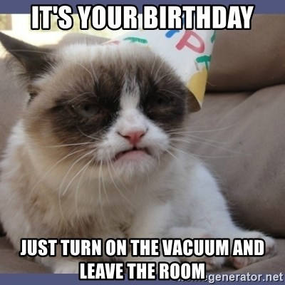 Birthday Grumpy Cat - It's your birthday just turn on the vacuum and leave the room