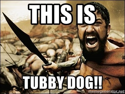 This Is Sparta Meme - This is tubby dog!!