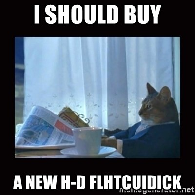 i should buy a boat cat - i should buy a new h-d flhtcuidick