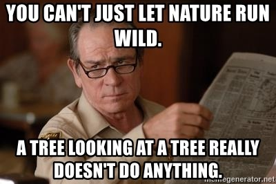 Tommy Lee Jones  - You can't just let nature run wild. A tree looking at a tree really doesn't do anything.