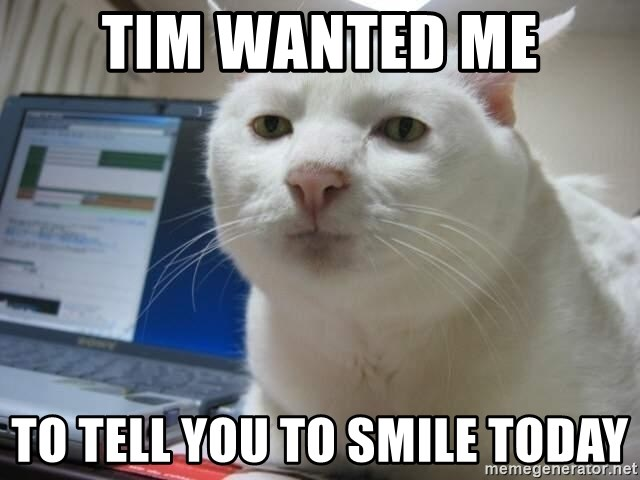 Serious Cat - tim wanted me to tell you to smile today