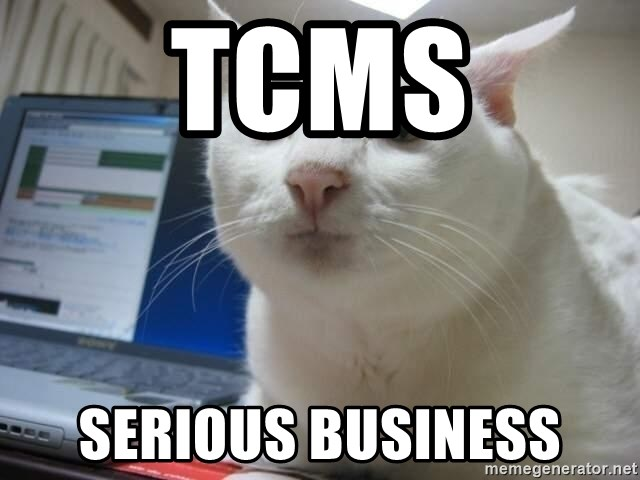 Serious Cat - TCMS SERIOUS Business