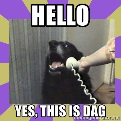 Yes, this is dog! - Hello Yes, this is dag