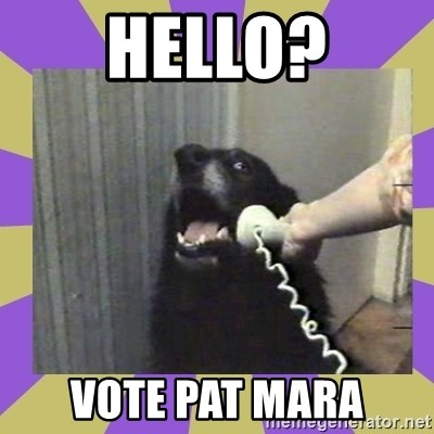 Yes, this is dog! - HELLO? Vote Pat Mara