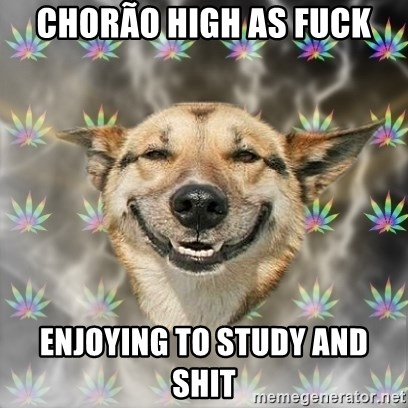 Stoner Dog - chorão high as fuck enjoying to study and shit