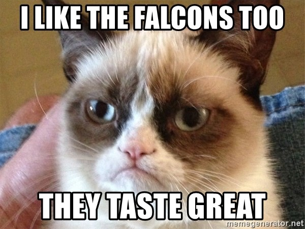Angry Cat Meme - I LIKE THE FALCONS TOO THEY TASTE GREAT