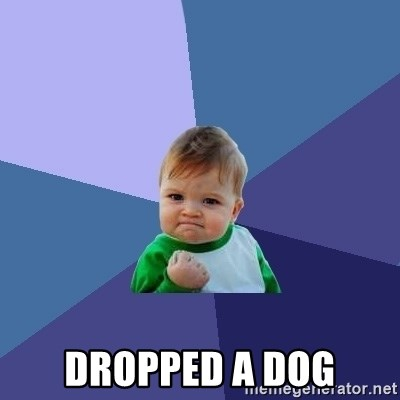 Success Kid -  Dropped a dog