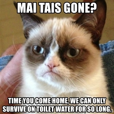 Grumpy Cat  - Mai tais Gone? Time you come home, we can only survive on toilet water for so long.