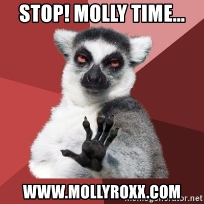 Chill Out Lemur - Stop! Molly time... www.MollyRoxx.com