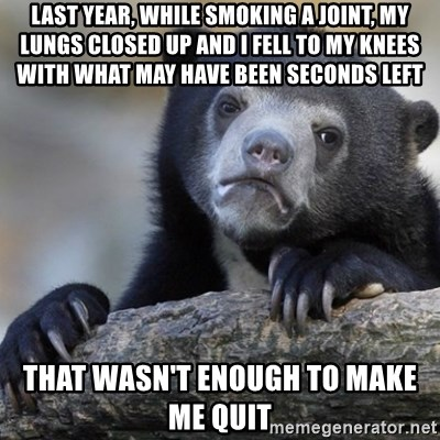 Confession Bear - last year, while smoking a joint, my lungs closed up and i fell to my knees with what may have been seconds left That wasn't enough to make me quit