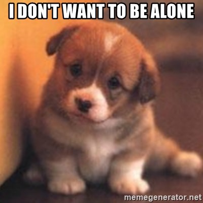 cute puppy - I don't want to be alone
