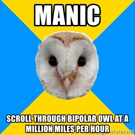 Bipolar Owl - MANIC SCROLL THROUGH BIPOLAR OWL AT A MILLION MILES PER HOUR