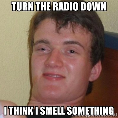 Stoner Stanley - turn the radio down i think i smell something