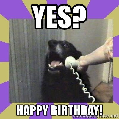 Yes, this is dog! - Yes? Happy Birthday!