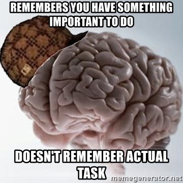 Scumbag Brain - Remembers you have something important to do Doesn't remember actual task