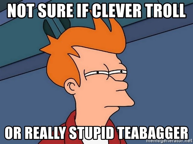 Futurama Fry - not sure if clever troll or really stupid teabagger