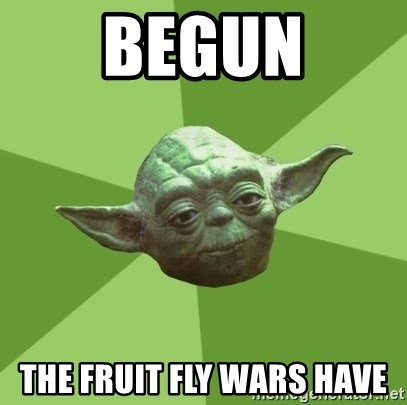 Advice Yoda Gives - Begun The fruit fly wars Have