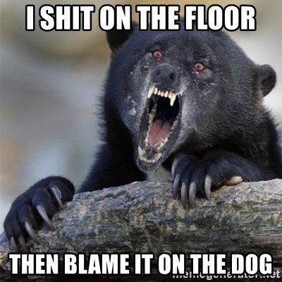 Insane Confession Bear - i shit on the floor then blame it on the dog