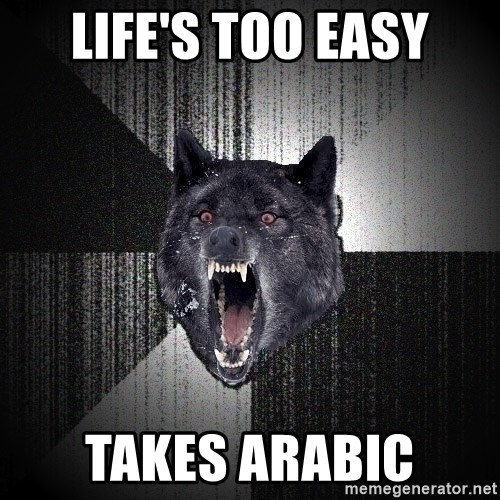 Insanity Wolf - life's too easy takes arabic