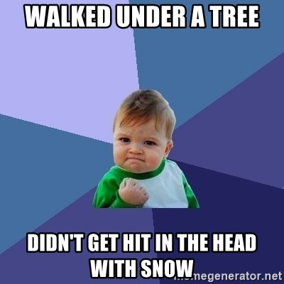 Success Kid - Walked under a tree didn't get hit in the head with snow
