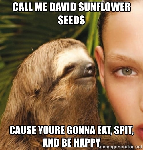 The Rape Sloth - call me david sunflower seeds cause youre gonna eat, spit, and be happy