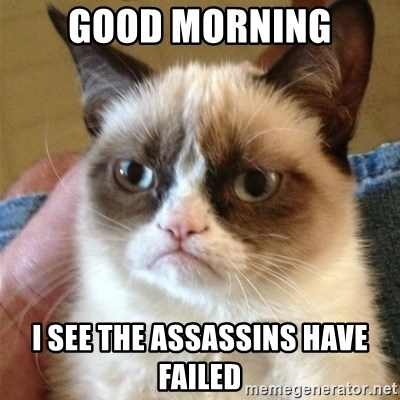 Grumpy Cat  - GOOD MORNING I SEE THE ASSASSINS HAVE FAILED