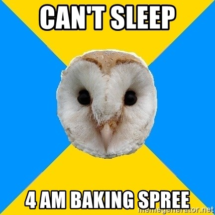 Bipolar Owl - Can't sleep 4 am baking spree