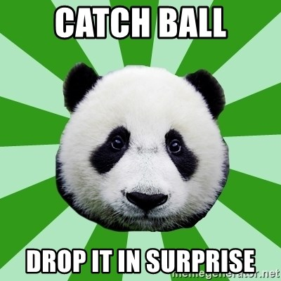 Dyspraxic Panda - CATCH BALL DROP IT IN SURPRISE