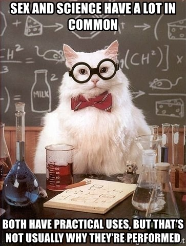 Chemistry Cat - Sex and science have a lot in common Both have practical uses, but that's not usually why they're performed