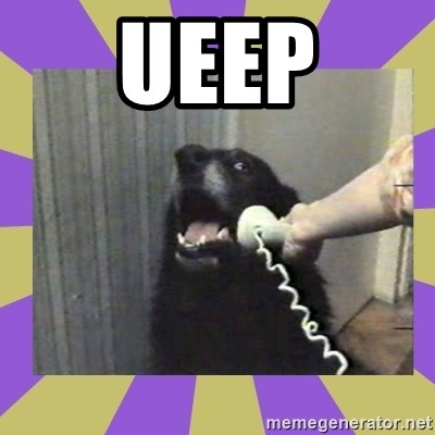 Yes, this is dog! - UEEP