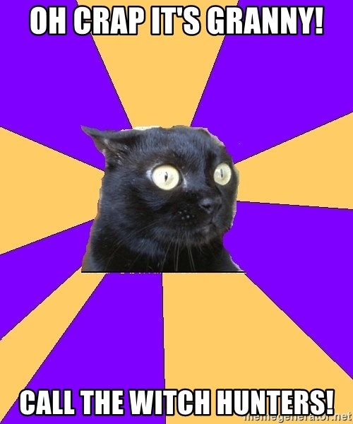 Anxiety Cat - OH CRAP IT'S GRANNY! CALL THE WITCH HUNTERS!