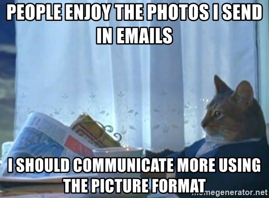 Sophisticated Cat - people enjoy the photos i send in emails i should communicate more using the picture format