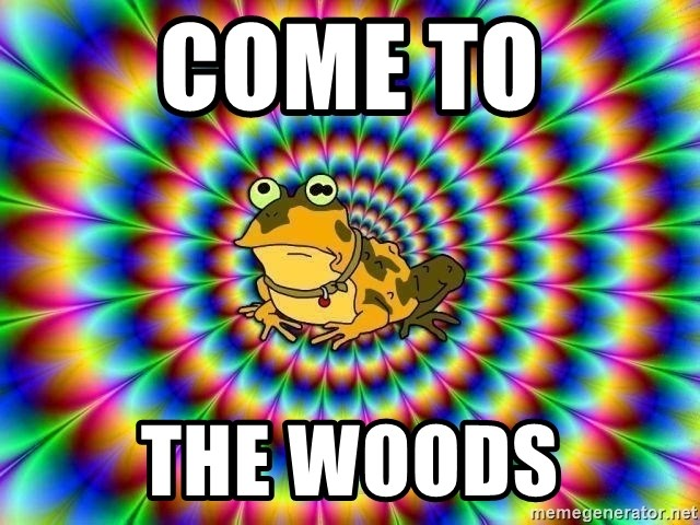 hypno toad - COME TO THE WOODS