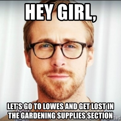 Ryan Gosling Hey Girl 3 - HEY GIRL, let's go to lowes and get lost in the gardening supplies section