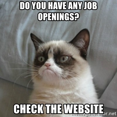 Grumpy Cat ={ - do you have any job openings? check the website