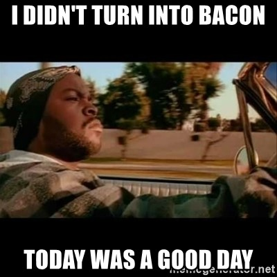 Ice Cube- Today was a Good day - I didn't turn into bacon today was a good day