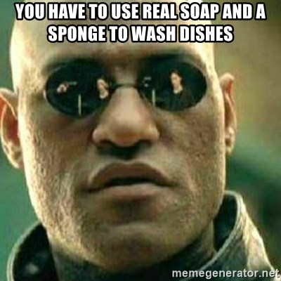 What If I Told You - You have to use real soap and a sponge to wash dishes