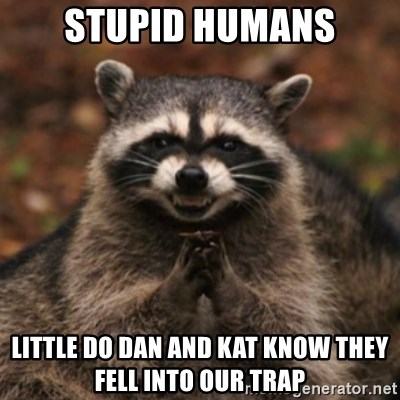 evil raccoon - Stupid humans Little do dan and kat know they fell into our trap