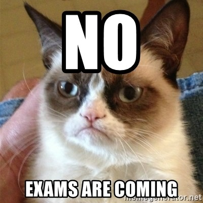 Grumpy Cat  - No Exams are coming